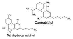 CBD  & THC Molecules